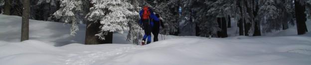 Böhmerwald Winter