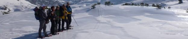 silent white Schneeschuh